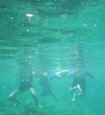 Surga wisata bawah laut (foto @DittoBirawa | Nikon Coolpix AW120)