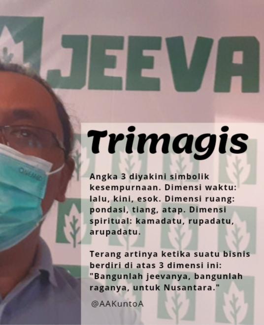 Trimagis